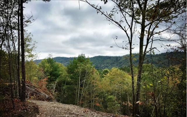 Tom Tom Trail, Blue Ridge, GA 30513 (MLS #272623) :: RE/MAX Town & Country