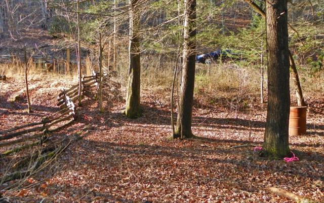 LT 2 Cherokee Trail, Blue Ridge, GA 30513 (MLS #272632) :: RE/MAX Town & Country