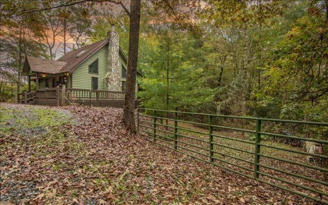 144 Deer Trail, Mineral Bluff, GA 30559 (MLS #272636) :: RE/MAX Town & Country