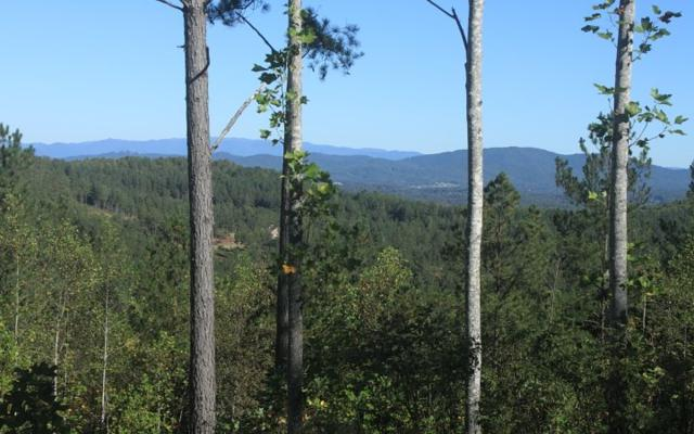 LOT66 Thirteen Hundred, Blairsville, GA 30512 (MLS #272667) :: RE/MAX Town & Country