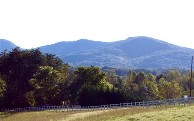 795 Hunter Road, Hayesville, NC 28904 (MLS #272677) :: RE/MAX Town & Country