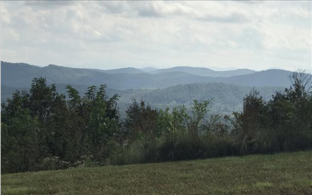 LOT37 Sanctuary @Vance Mtn, Murphy, NC 28906 (MLS #272728) :: RE/MAX Town & Country
