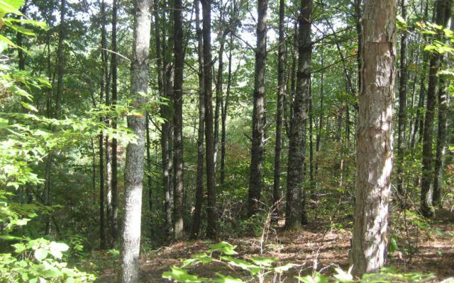 LT 4 Rim Trail Drive, Hayesville, NC 28904 (MLS #272736) :: RE/MAX Town & Country