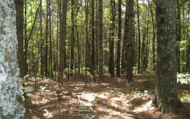 LT 5 Rim Trail Drive, Hayesville, NC 28904 (MLS #272737) :: RE/MAX Town & Country