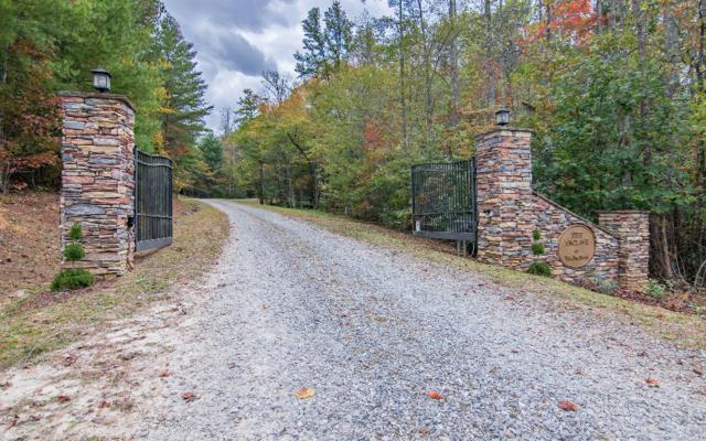 LOT 8 Winding Brook Trail, Morganton, GA 30560 (MLS #272817) :: RE/MAX Town & Country
