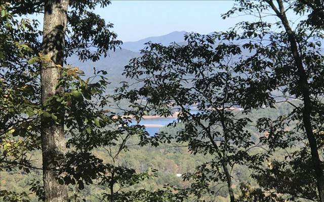 111 Laurel Brooke, Blairsville, GA 30512 (MLS #272905) :: Path & Post Real Estate