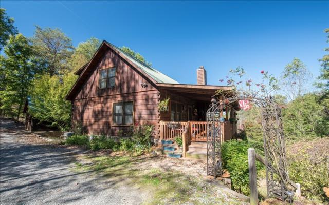 306 Arrow Way, Mineral Bluff, GA 30559 (MLS #272935) :: RE/MAX Town & Country