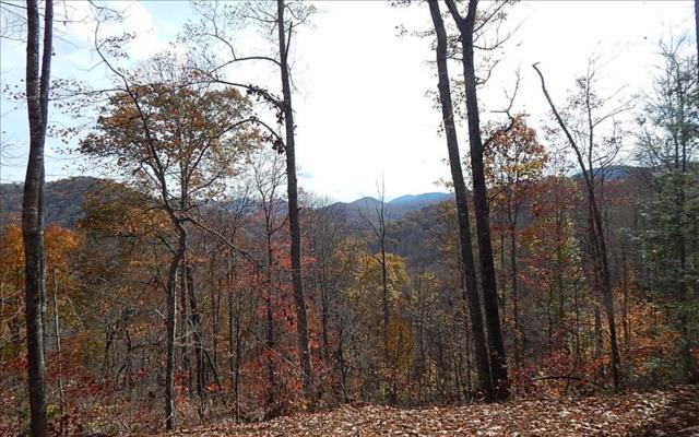 LOT 9 Wilderness Drive, Hayesville, NC 28904 (MLS #273025) :: RE/MAX Town & Country