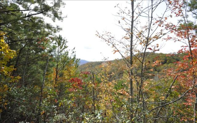 Andrews, NC 28906 :: RE/MAX Town & Country