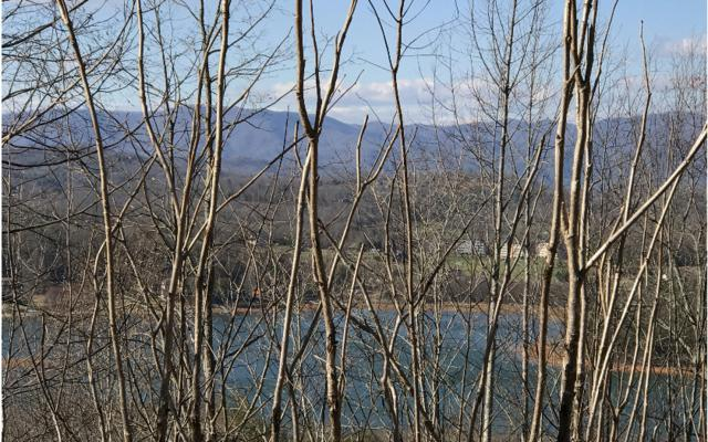 LT 18 Robin Ridge, Hiawassee, GA 30546 (MLS #273062) :: RE/MAX Town & Country