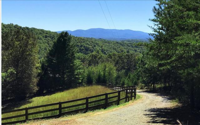 LT54 Big Timber Road, Mineral Bluff, GA 30559 (MLS #273123) :: RE/MAX Town & Country