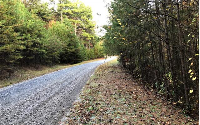 LT56 Big Timber Road, Mineral Bluff, GA 30559 (MLS #273126) :: RE/MAX Town & Country