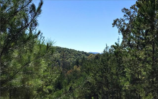 LT61 Big Timber Road, Mineral Bluff, GA 30559 (MLS #273132) :: RE/MAX Town & Country