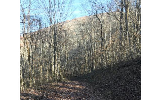#2C Black Gap Road Par.2, Franklin, NC 28734 (MLS #273422) :: RE/MAX Town & Country