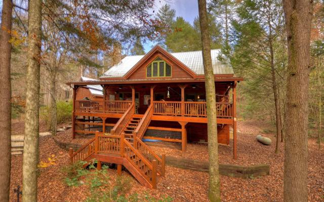 300 River Road, Cherry Log, GA 30522 (MLS #273457) :: RE/MAX Town & Country