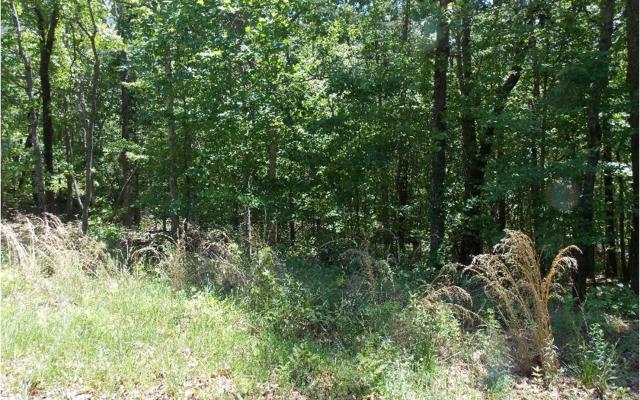 Camp Branch, Ellijay, GA 30540 (MLS #273614) :: RE/MAX Town & Country