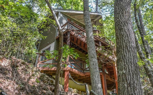 236 Whitewater Path, Ellijay, GA 30536 (MLS #273751) :: RE/MAX Town & Country