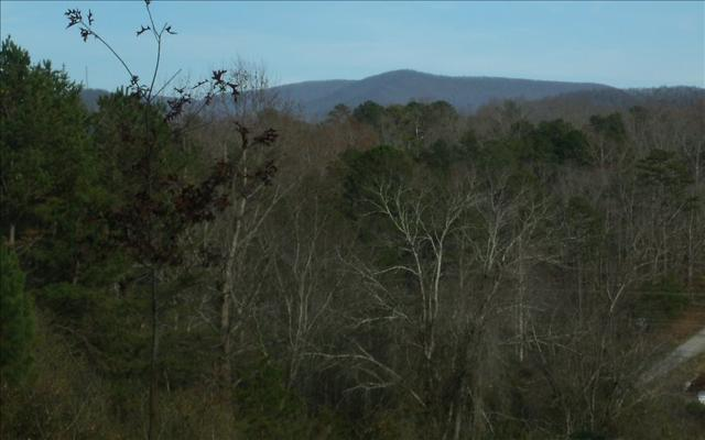 LOT 1 Chinquapin Road, East Ellijay, GA 30539 (MLS #273792) :: RE/MAX Town & Country