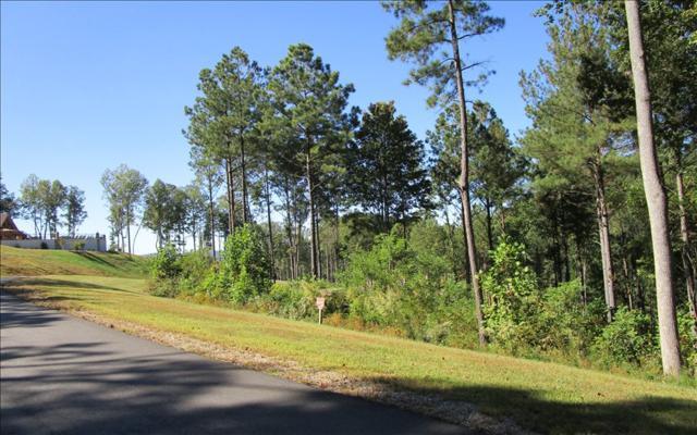 LT56 Thirteen Hundred S/D, Blairsville, GA 30512 (MLS #273793) :: RE/MAX Town & Country