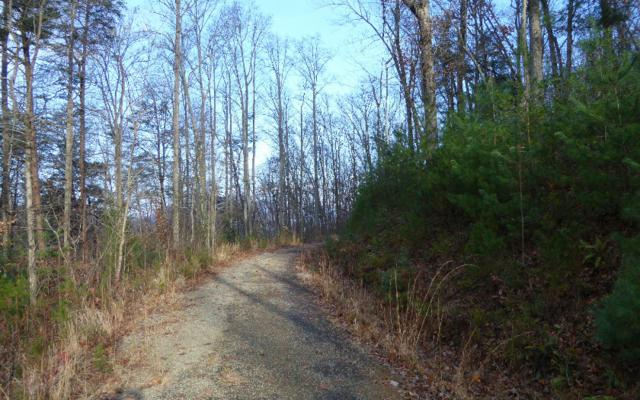 Hiawassee, GA 30546 :: Path & Post Real Estate