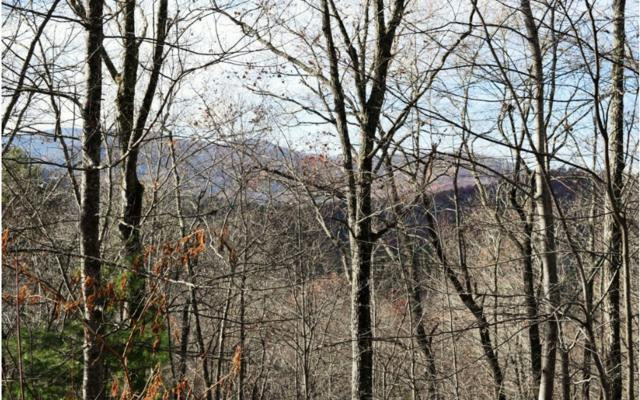 12 Buckskin Dr, Cherry Log, GA 30513 (MLS #273859) :: RE/MAX Town & Country