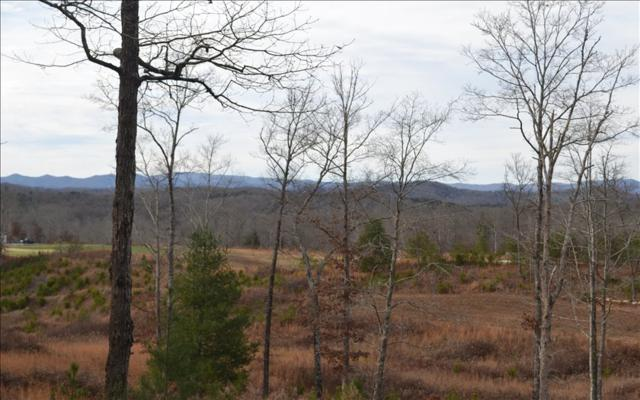 186 Trails End Way, Mineral Bluff, GA 30559 (MLS #273881) :: RE/MAX Town & Country