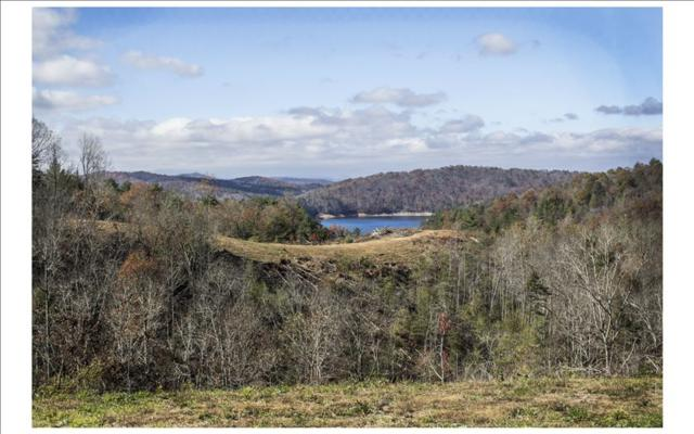 00 Majestic Mountain Tr, Murphy, NC 28906 (MLS #273882) :: RE/MAX Town & Country