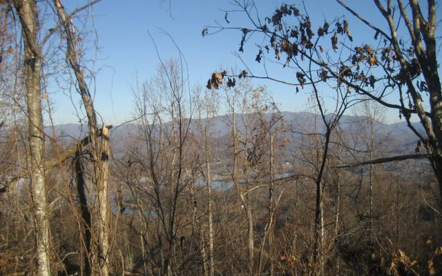 LT 68 Eagles View, Hayesville, NC 28904 (MLS #273943) :: RE/MAX Town & Country
