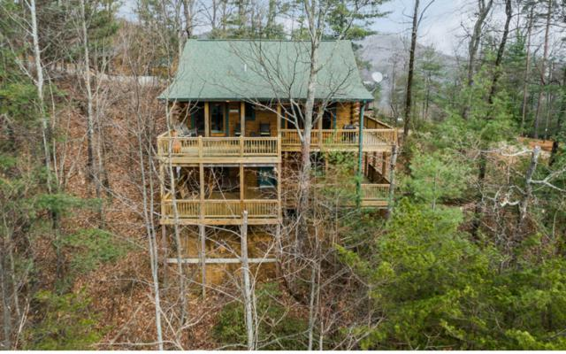 255 Mountain View Rd, Ellijay, GA 30540 (MLS #273988) :: RE/MAX Town & Country