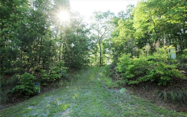 0 Harris Creek Road, Ellijay, GA 30540 (MLS #273993) :: RE/MAX Town & Country