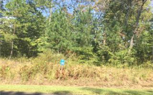 LT166 Harris Creek Drive, Ellijay, GA 30540 (MLS #274057) :: RE/MAX Town & Country