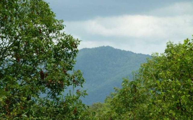 LOT 3 Kontoes Ridge, Ellijay, GA 30540 (MLS #274111) :: RE/MAX Town & Country