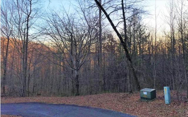 LT 9 Meadow Loop Rd, Ellijay, GA 30536 (MLS #274127) :: RE/MAX Town & Country