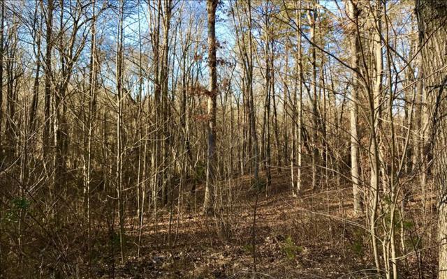 LT 22 River Ridge, Blue Ridge, GA 30513 (MLS #274178) :: RE/MAX Town & Country