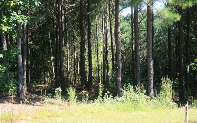 LT 11 Black Bear Ridge, Ellijay, GA 30540 (MLS #274185) :: RE/MAX Town & Country