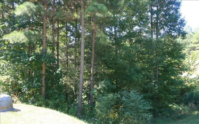 LT 40 Black Bear Ridge, Ellijay, GA 30540 (MLS #274191) :: RE/MAX Town & Country