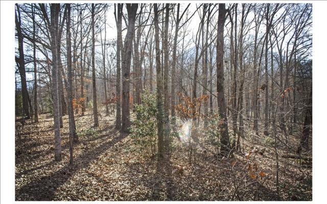 00 Bynum Penland Road, Hayesville, NC 28904 (MLS #274194) :: RE/MAX Town & Country