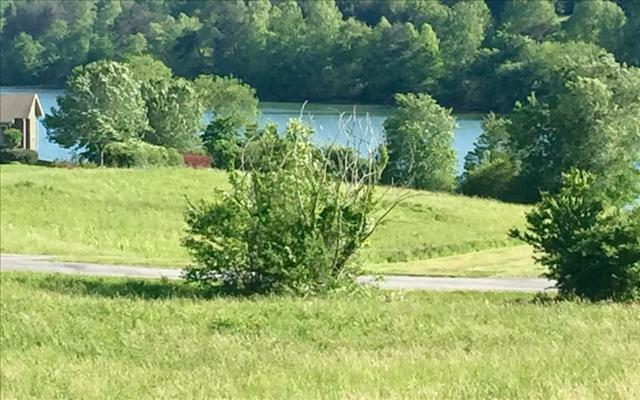 LOT10 Hidden Fields Estate, Hiawassee, GA 30546 (MLS #274235) :: RE/MAX Town & Country