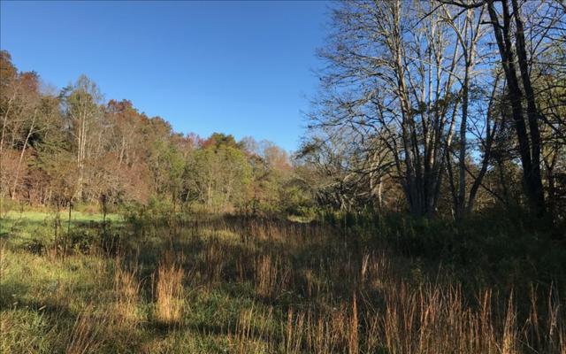 LOT17 River Meadows, Blairsville, GA 30512 (MLS #274323) :: RE/MAX Town & Country