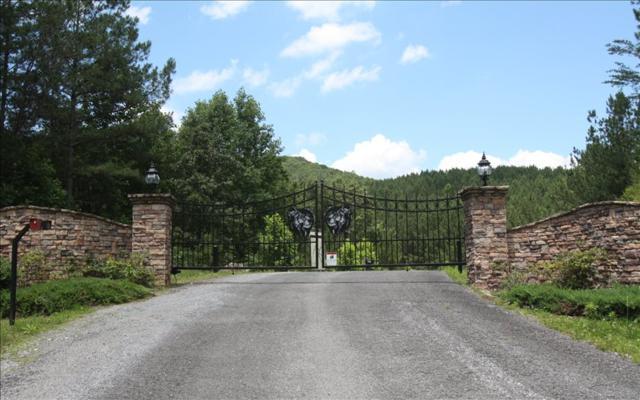 LT 6 Black Bear Ridge, Ellijay, GA 30536 (MLS #274347) :: RE/MAX Town & Country