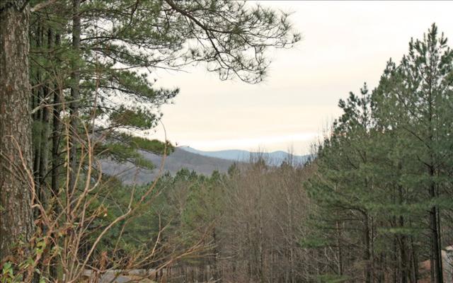 LT 7 Black Bear Ridge, Ellijay, GA 30536 (MLS #274348) :: RE/MAX Town & Country