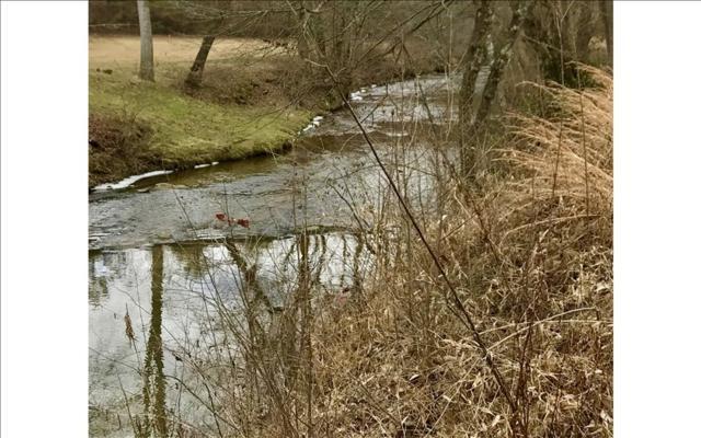 LOT59 Riverside On Lake No, Blairsville, GA 30512 (MLS #274389) :: RE/MAX Town & Country