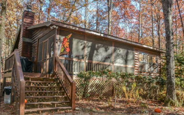 942 Sunrise Valley Road, Blue Ridge, GA 30513 (MLS #274419) :: RE/MAX Town & Country