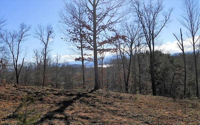 LT10 Majestic Dr, Hayesville, NC 28904 (MLS #274466) :: RE/MAX Town & Country