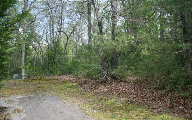 LOT J River Bluff Road, Hayesville, NC 28904 (MLS #274490) :: RE/MAX Town & Country