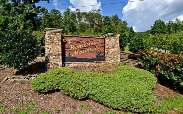 LT 41 Homestead Mountain, Ellijay, GA 30540 (MLS #274523) :: RE/MAX Town & Country