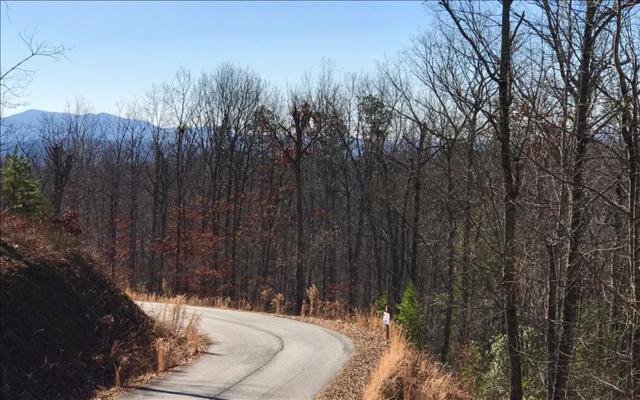 LOT 8 Meadow Brook Trail, Morganton, GA 30560 (MLS #274550) :: RE/MAX Town & Country
