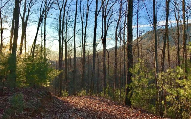 LT 18 The Hemlocks, Ellijay, GA 30536 (MLS #274557) :: RE/MAX Town & Country