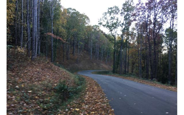 LT174 Trailwood Drive, Ellijay, GA 30540 (MLS #274571) :: RE/MAX Town & Country