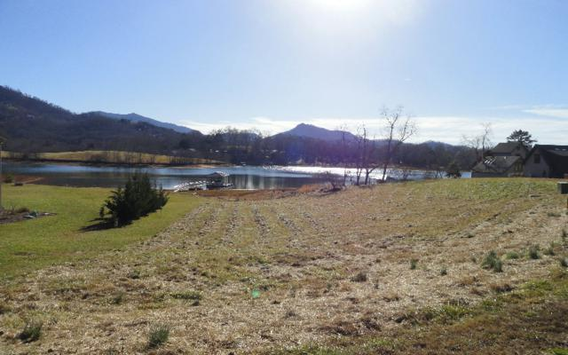 LT 3 Mcintosh Cove, Hayesville, NC 28904 (MLS #274606) :: RE/MAX Town & Country